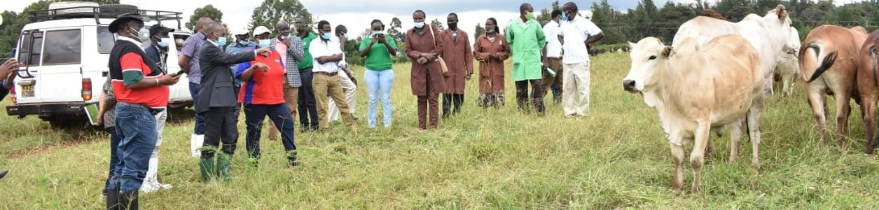 The Chairman & Board of Directors tour Adc Kitale region